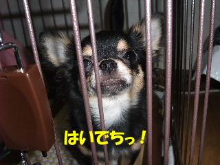 BLOG2008_05100011m