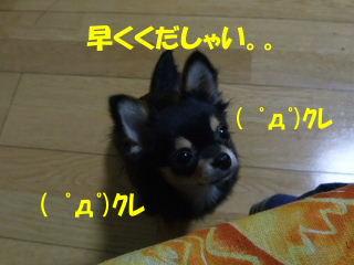BLOG2008_05180012m