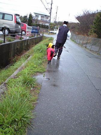 雨の日散歩 1