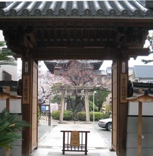 観音寺blog01