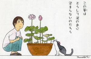 Masako N blogo1