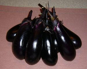 茄子blog01