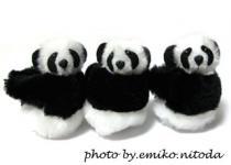 blog_panda.jpg