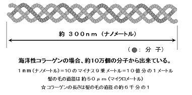 agc-01.jpg
