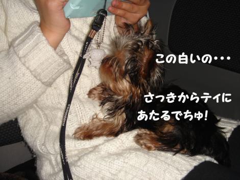 ワクチン3