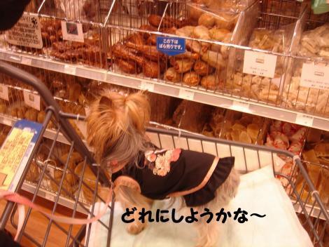 買い物12