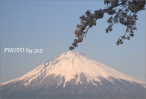 20080406_1322s.jpg