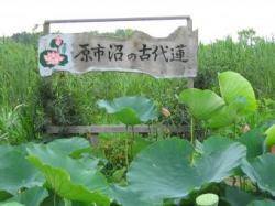 haraichinuma.jpg