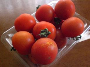 いただきトマト