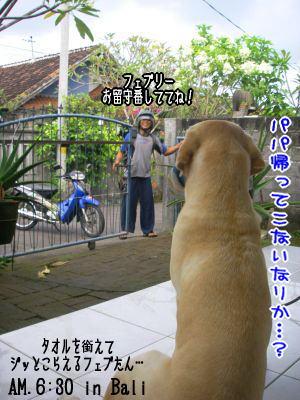 20080504_2.jpg