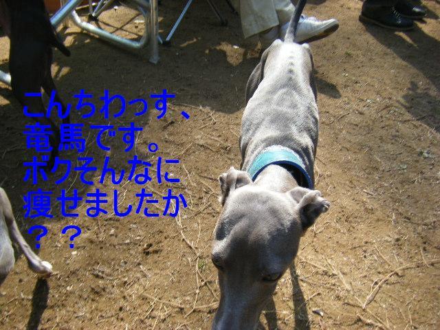 0322吉岡DR9
