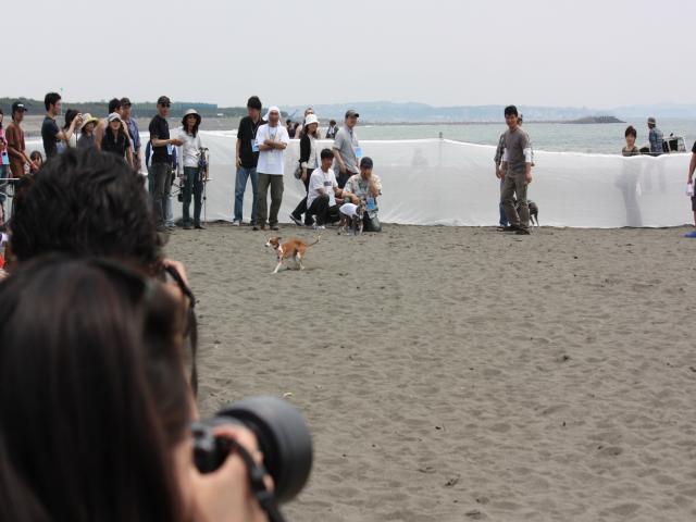 BLOG2008_0518海おさ23