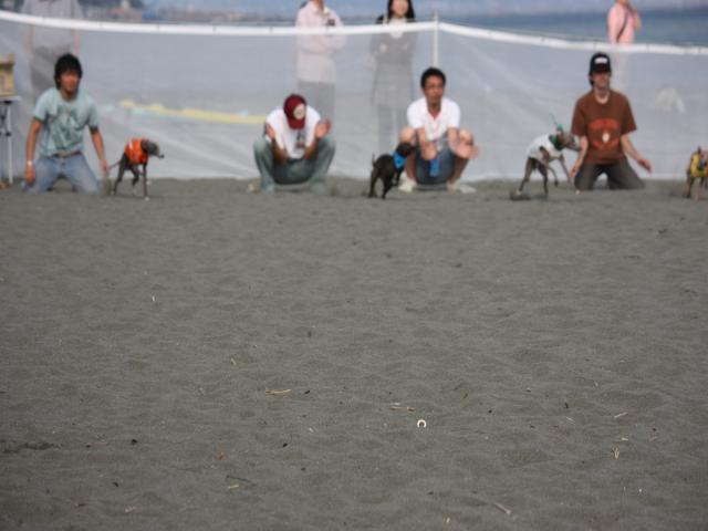 BLOG2008_0518海おさ47