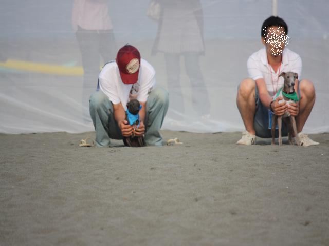 BLOG2008_0518海おさ48
