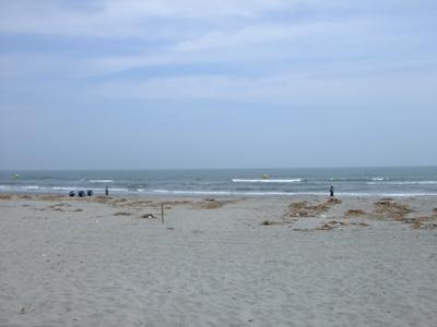 toyohama beach4