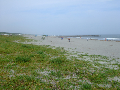 toyohama beach