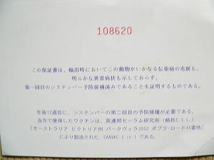 0604.jpg