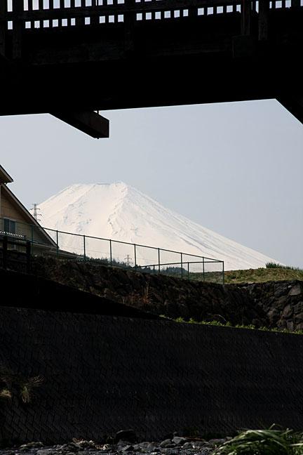 桂川から見た富士山