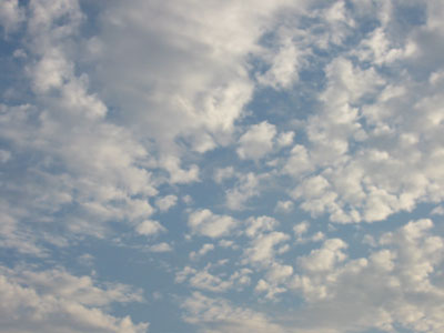 2008-7-17b.jpg