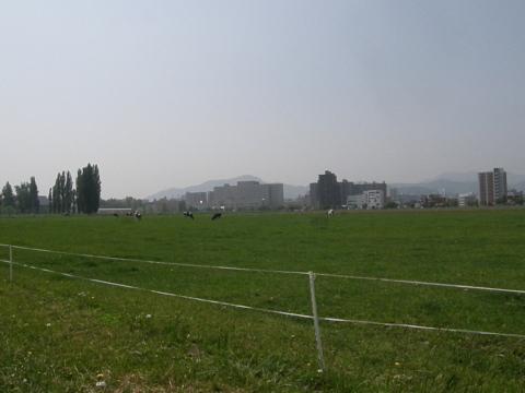 P5240025.jpg