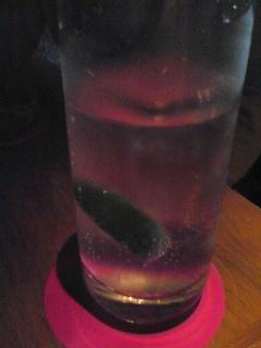 gina&joel 2