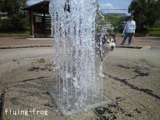 20080504ウェイ噴水
