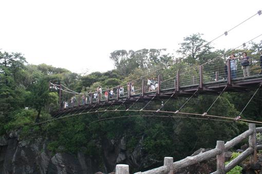 200805熱海 城ヶ崎吊り橋