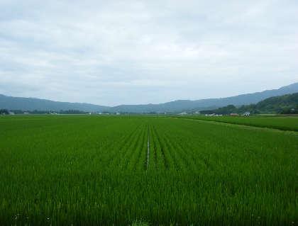 2008_07240001.jpg