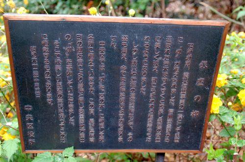 銀座のヤナギの碑