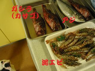 IMG_2133料理
