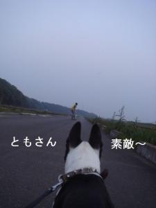 ブログ-3