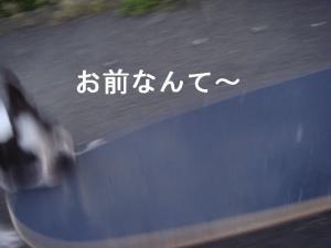 ブログ-6