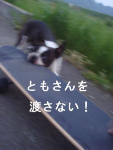 ブログ-8
