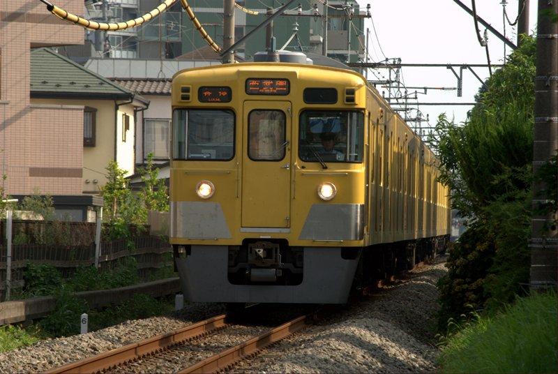 DSC_2511.jpg