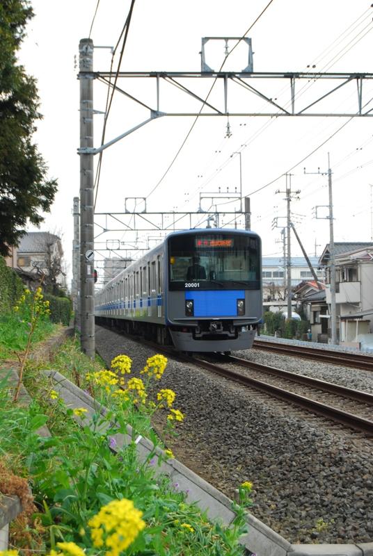 DSC_9371.jpg