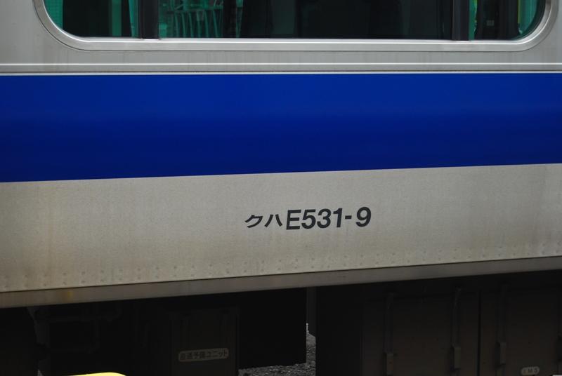 DSC_9591.jpg