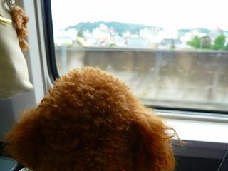 新幹線にて・・・
