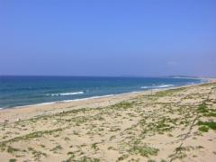 海の中道海浜公園~潮見台