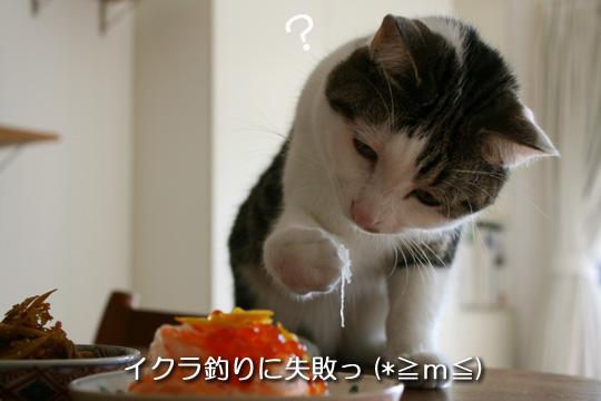 ぷぷぷ失敗10