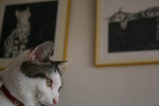 考える猫大ちゃん7