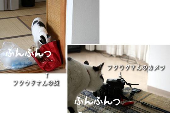 お役目お役目3