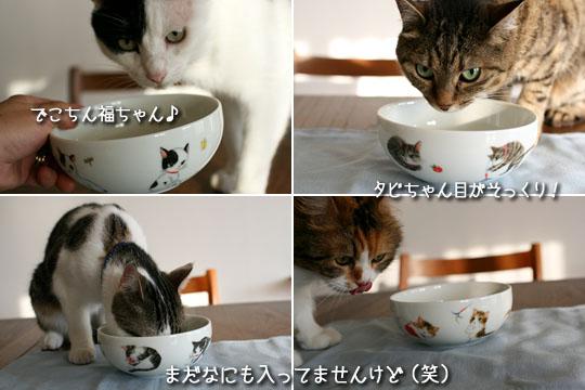 え?実物より可愛い?2