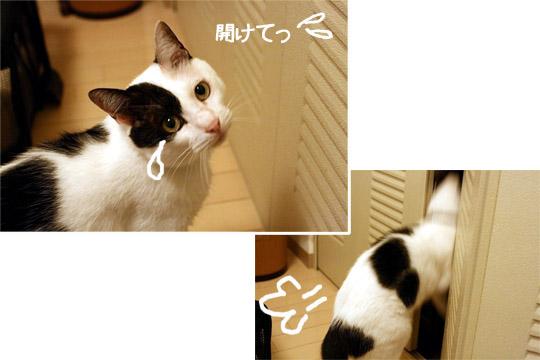 涙ちょちょぎれ9