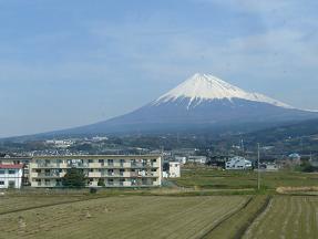 fujifuji.jpg