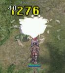 20070129125224.jpg
