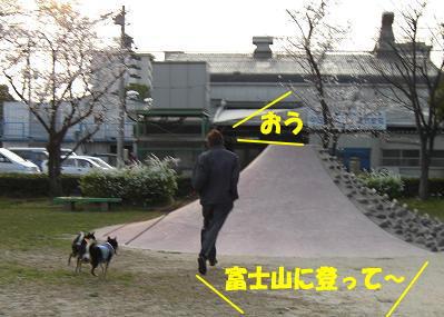 200331-4.jpg