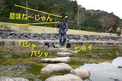 200402-9.jpg