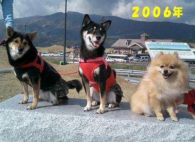 200409-9.jpg