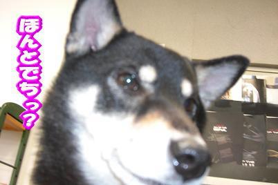 200414-4.jpg