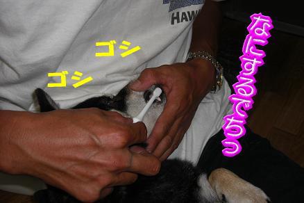200730-8.jpg